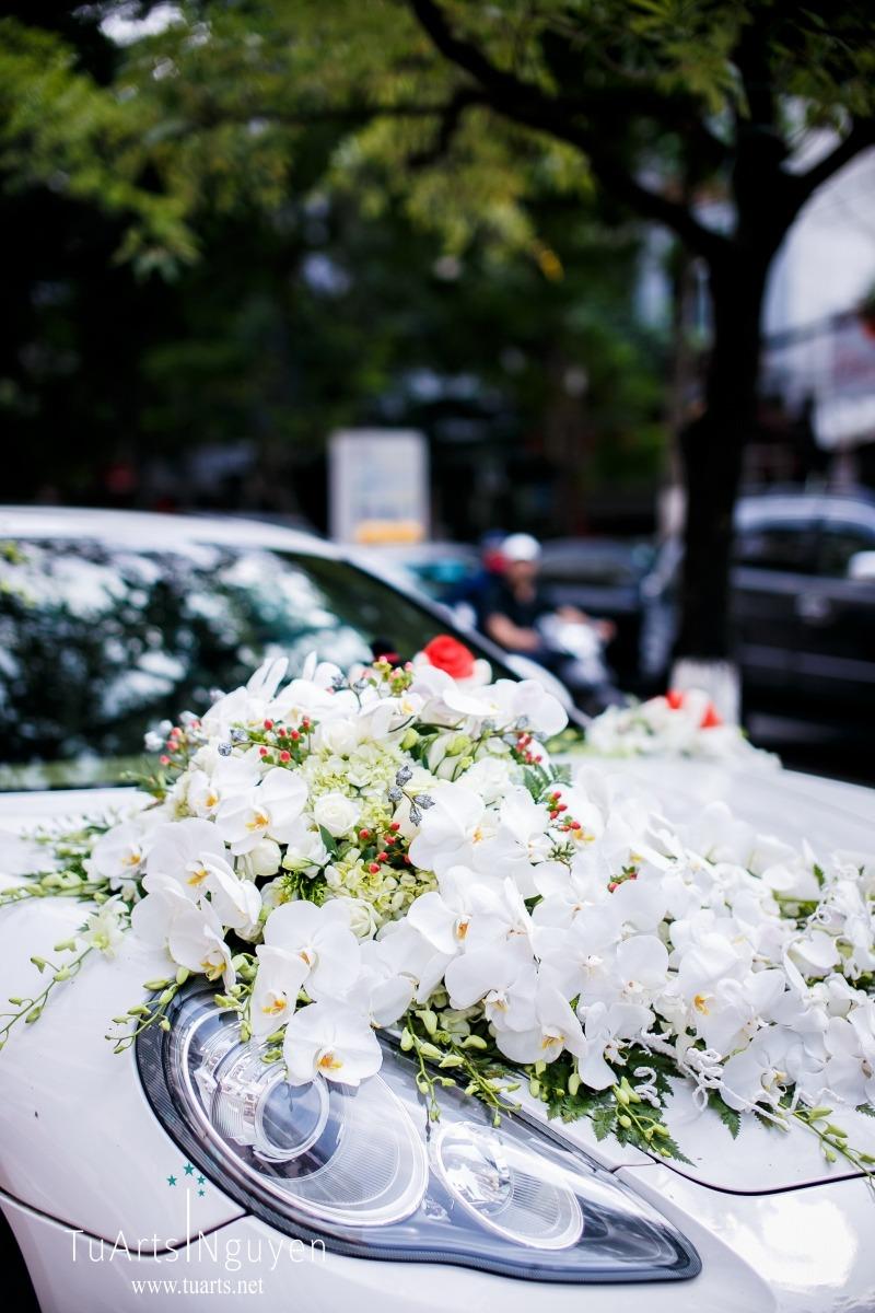 Album ảnh phóng sự cưới: Tiến Dũng - Kim Cương 30