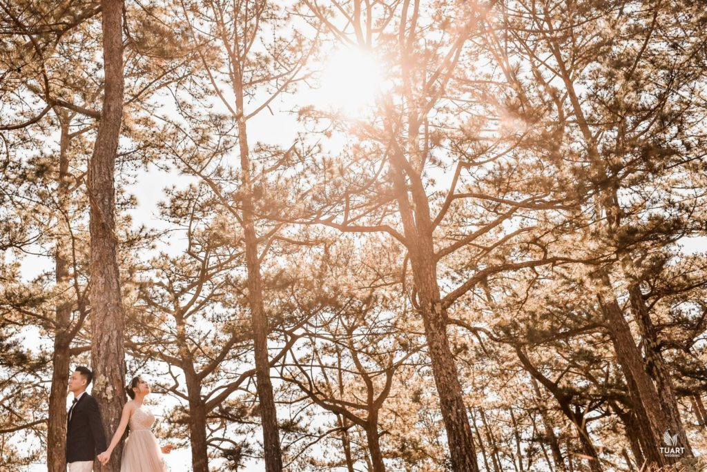 studio chụp ảnh cưới đà lạt