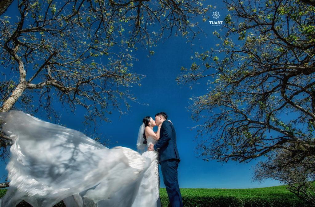 Chia sẻ kinh nghiệm chụp ảnh cưới đẹp ở Mộc Châu