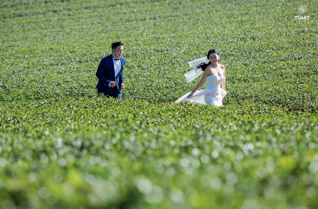 Album ảnh cưới tổng hợp ở Mộc Châu 25