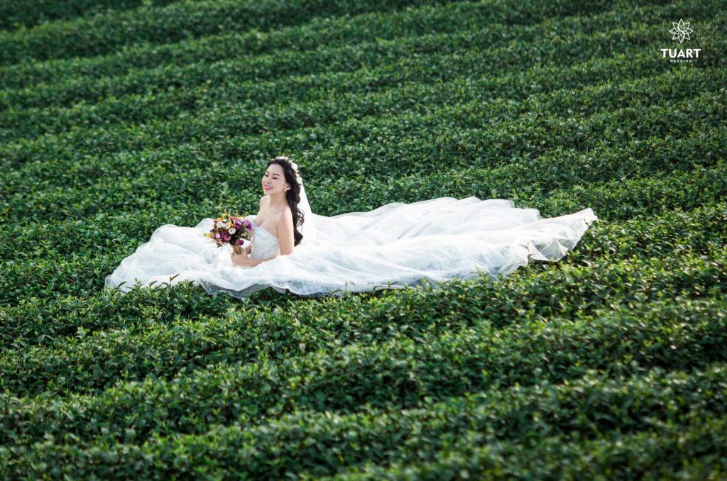 Album ảnh cưới tổng hợp ở Mộc Châu 11