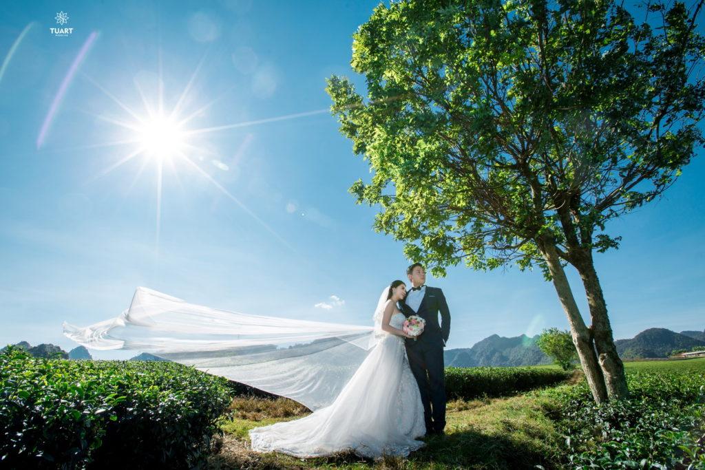 Album ảnh cưới tổng hợp ở Mộc Châu 1