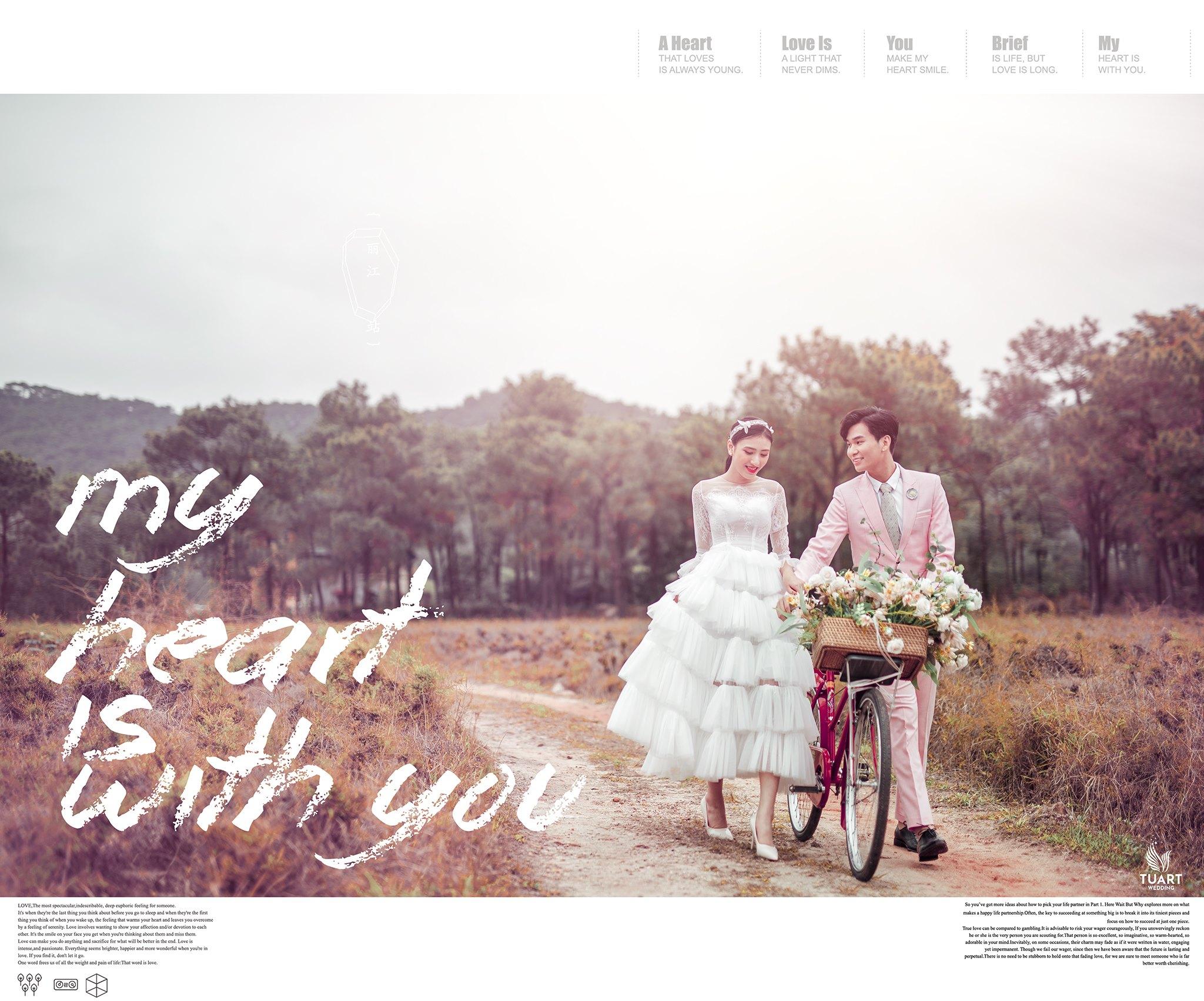Album ảnh cưới đẹp tại Hải Dương : Rừng thông